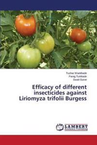 Efficacy of Different Insecticides Against Liriomyza Trifolii Burgess