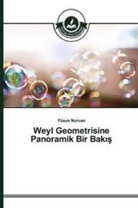 Weyl Geometrisine Panoramik Bir Bak