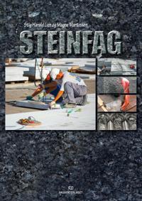 Steinfag - Stig Harald Lien, Magne Martinsen pdf epub