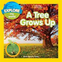 Explore My World: A Tree Grows Up