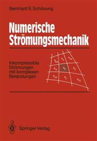 Numerische Str mungsmechanik
