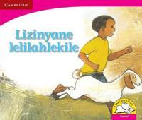 Lizinyane lelilahlekile