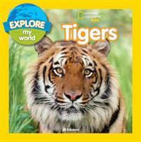 Explore My World  Tigers - Jill Esbaum - böcker (9781426324260)     Bokhandel