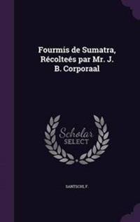 Fourmis de Sumatra, Recoltees Par Mr. J. B. Corporaal