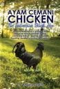 Ayam Cemani Chicken - The Indonesian Black Hen. A complete owner's guide to this rare pure black chicken breed. Covering History, Buying, Housing, Fee