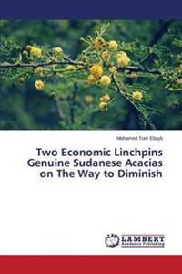 Two Economic Linchpins Genuine Sudanese Acacias on the Way to Diminish