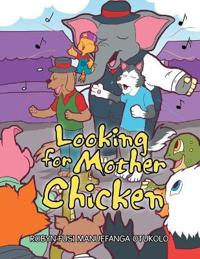 Looking for Mother Chicken