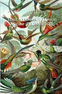 Ernst Haeckel Art Forms in Nature (Plates 76-100): (Introductions to Art) 25 All Original, Color Plates