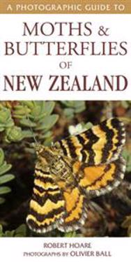 Photographic Guide to Moths & Butterflies of New Zealand