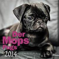 Der Mops 2014