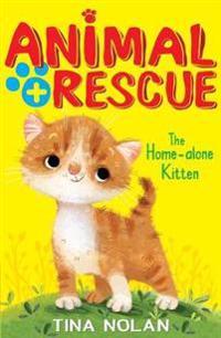 Home-alone Kitten