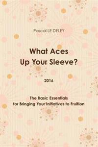 What Aces Up Your Sleeve? 2016: the Basic Essentials for Bringing Your Initiatives to Fruition