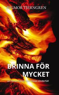 Brinna för mycket : en roman om en människas sönderfall