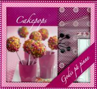 Cakepops box - bok, spritspåse, cakepopspinnar