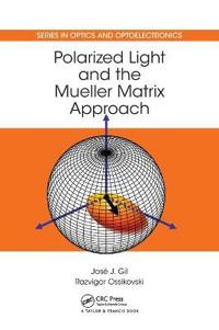 Polarized Light and the Mueller Matrix Approach
