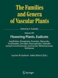 Flowering Plants. Dicotyledons