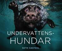 Undervattenshundar - Seth Casteel pdf epub