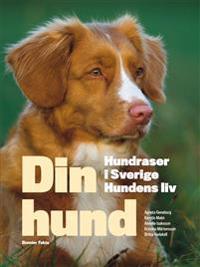 Din hund : hundraser i Sverige - hundens liv