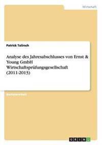 Analyse Des Jahresabschlusses Von Ernst & Young Gmbh Wirtschaftsprufungsgesellschaft (2011-2013)