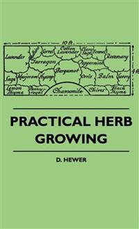 Practical Herb Growing