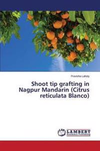Shoot Tip Grafting in Nagpur Mandarin (Citrus Reticulata Blanco)