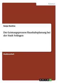 Der Leistungsprozess Haushaltsplanung Bei Der Stadt Solingen