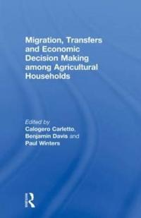Migration, Transfers and Economic Decision Making Among Agricultural Households