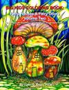 Big Kids Coloring Book: Fairy Houses and Fairy Doors, Volume Two: 50+ Images on Single-Sided Pages for Wet Media - Markers and Paints