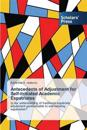 Antecedents of Adjustment for Self-Initiated Academic Expatriates