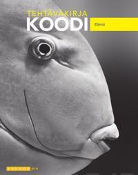 Koodi (OPS16)