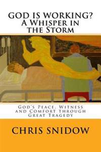 God Is Working? a Whisper in the Storm: God's Peace, Witness and Comfort Through Great Tragedy