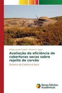 Avaliacao Da Eficiencia de Coberturas Secas Sobre Rejeito de Carvao