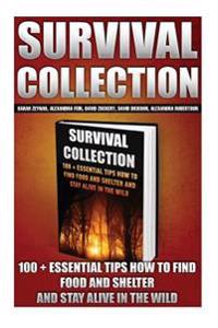 Survival Collection: 100 + Essential Tips How to Find Food and Shelter and Stay Alive in the Wild: (Survival Pantry, Preppers Pantry, Prepp