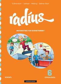 Radius 6 - Jan Erik Gulbrandsen, Randi Løchsen, Kristin Måleng, Vibeke Saltnes Olsen   Ridgeroadrun.org