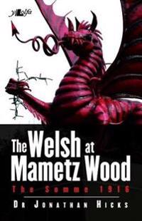 Welsh at Mametz Wood, The Somme 1916, The