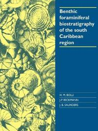 Benthic Foraminiferal Biostratigraphy of the South Caribbean