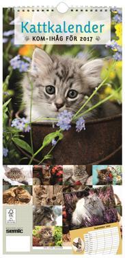 Kattkalender 2017