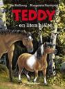 Teddy : en liten hjälte