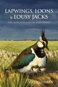 Lapwings, Loons and Lousy Jacks