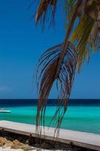 Caribbean Beach Journal