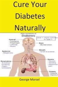 Cure Your Diabetes Naturally: A Ste by Stap Guide to Cure Your Diabetes in the Most Natural Way