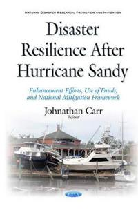 Disaster Resilience After Hurricane Sandy