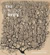 Beautiful Brain: The Drawings of Ramon y Cajal
