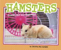 Hamsters - questions and answers
