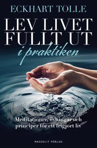 Lev livet fullt ut i praktiken : meditationer, övningar och principer för
