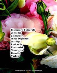 Blommor I Fotografi 25 Bilder Pa Papper Super Digitized Ensidiga Lockande Romantisk Nostalgisk Konstig Vacker