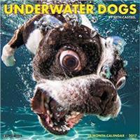 Underwater Dogs 2017 Calendar