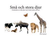 Små och stora djur