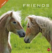 Friends Pferde Broschurkalender - Kalender 2017
