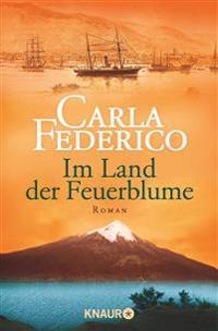 Chile 01. Im Land der Feuerblume